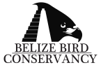 Belize Bird Conservancy
