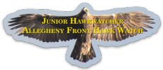 Allegheny Front Hawk Watch