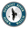 Detroit River Hawk Watch