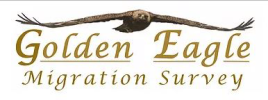 Golden Eagle Migration Survey (GEMS)